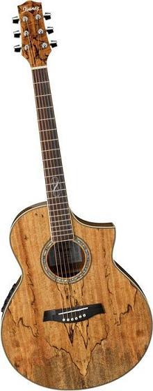 Ibanez Exotic Wood Series Ew20sge Acoustic Electric Guitar